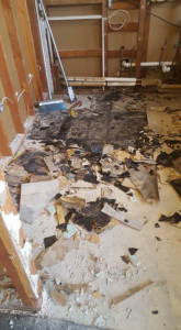home renovation demolition